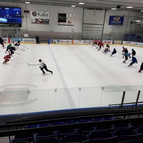 Camp de performance hockey